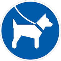 Pilotprojekt: Angeleinte Hunde auf der Außenterrasse erlaubt!